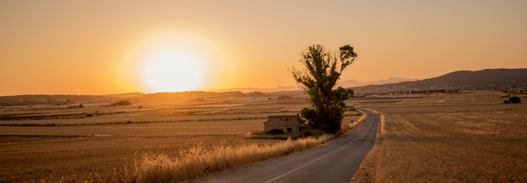 empty rural road, sun setting
