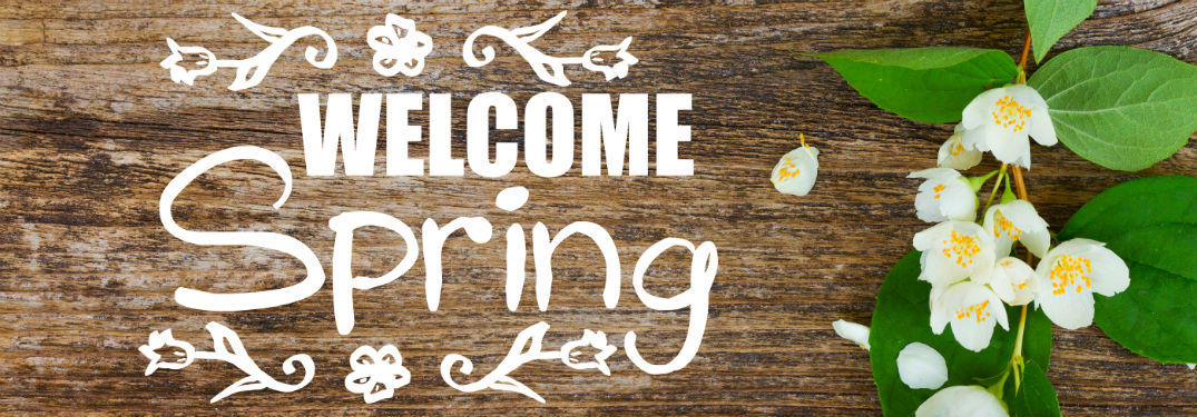 Welcome Spring written in white next to flowers