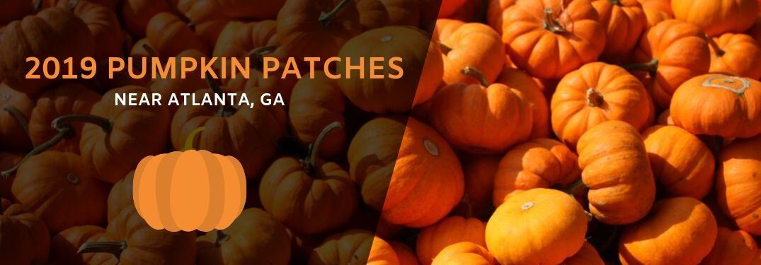 "bed of pumpkins with overlaying ""2019 Pumpkin Patches near Altanta, GA"" text"