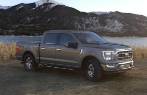 2021 Ford F-150 in color Stone Gray Metallic