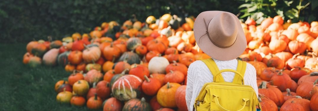 Fall Woman in Scenic Pumpkin Patch