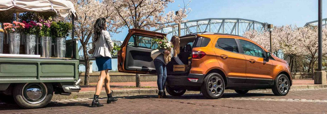 woman loading flowers into rear cargo area of 2018 Ford EcoSport