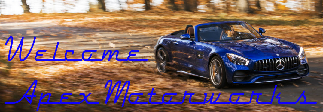 2018 Mercedes-Benz AMG GT C Roadster blue driving through leaves