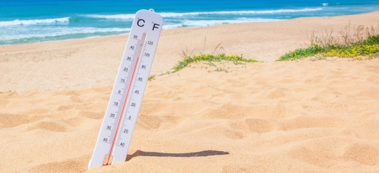 thermometer sticking out of the sand on a beach