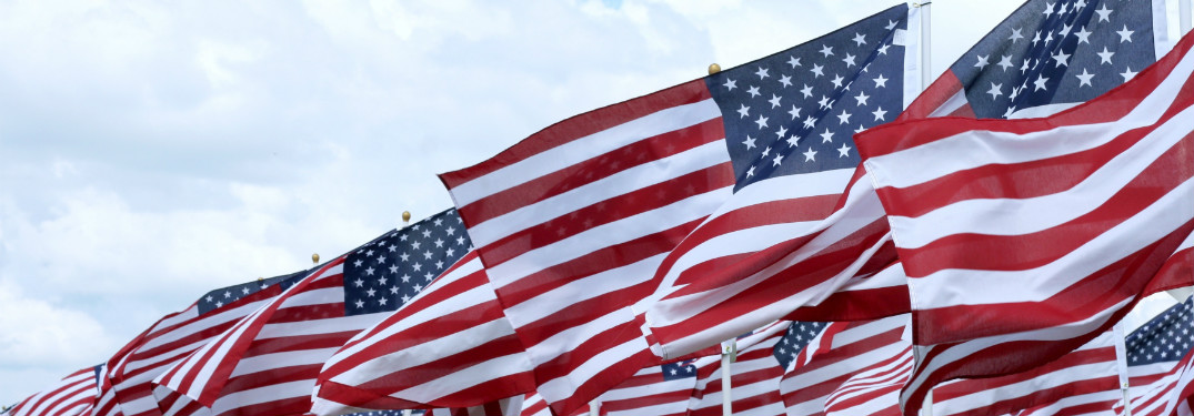 american flags lined in rows waving in the wind