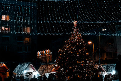 christmas tree and houses decorated with lights with stringed lights canopy above