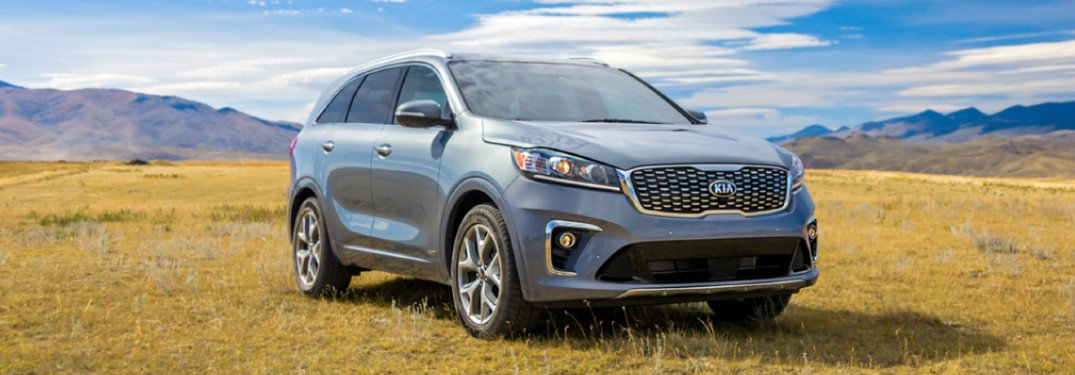 2020 Kia Sorento front passenger side parked in grass field