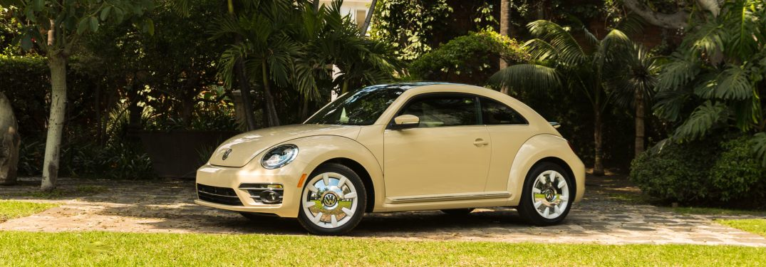2019 Volkswagen Beetle parked in front of a row of trees