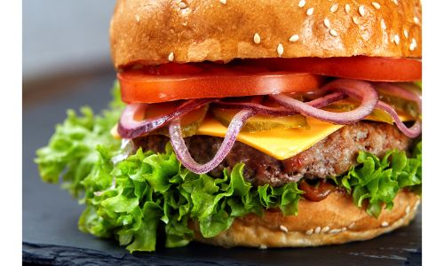 stock photo of burger with lettuce onions tomatoes and cheese