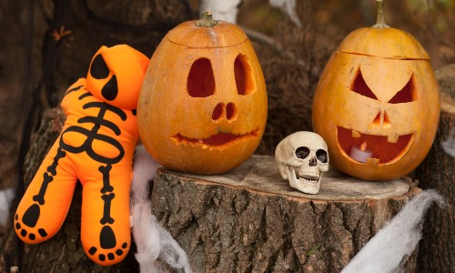 skull and jack o lanterns on log