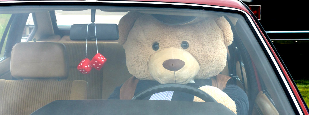 Teddy Bear sitting in the driver's seat of a vehicle
