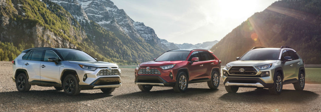 Three 2019 Toyota RAV4 models