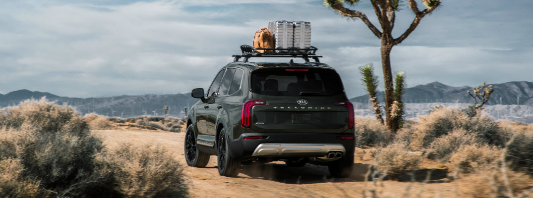 2020 Kia Telluride exterior rear shot with forest green paint color with cargo placed on roof racks while parked in the desert next to a prickly tree