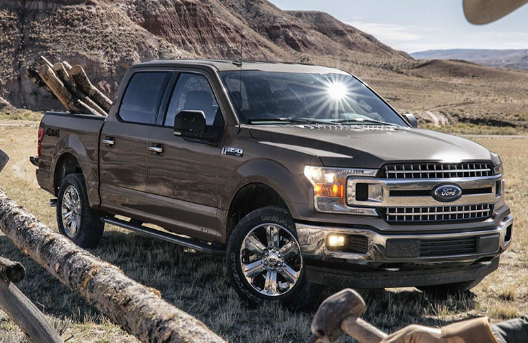2019 Ford F-150 parked in a grassy area