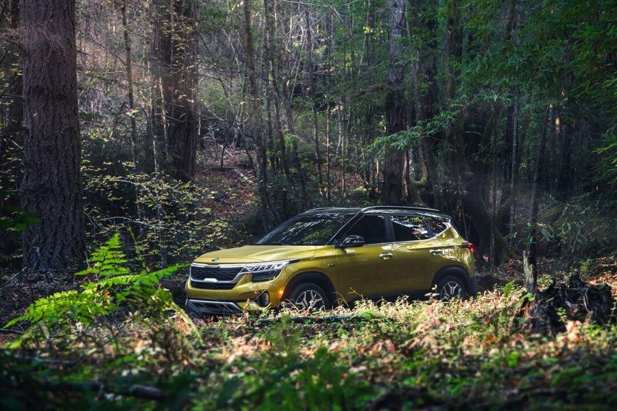 2021 Kia Seltos in the woods