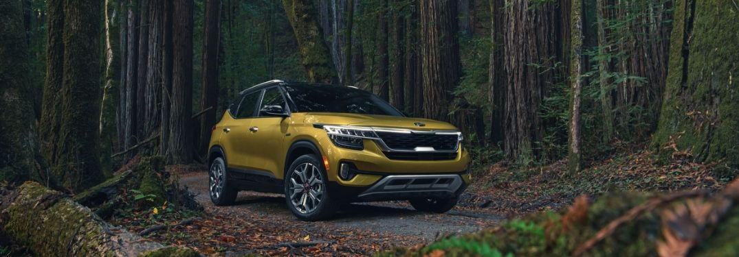 2021 Kia Seltos parked in the woods