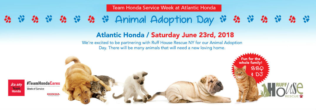 Atlantic Honda hosts Ruff House Rescue Adoption Event