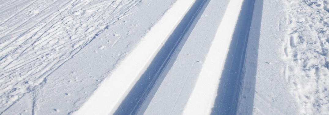 two tracks in the snow
