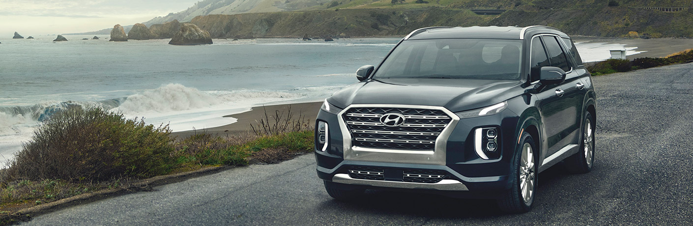 hyundai palisade by the ocean