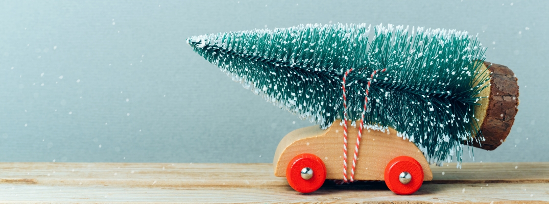 Safely Transport Your Christmas Tree This Holiday Season