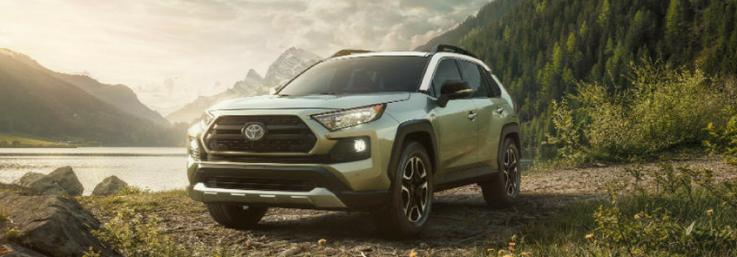 2019 Toyota RAV4 parked in a forest by a pond