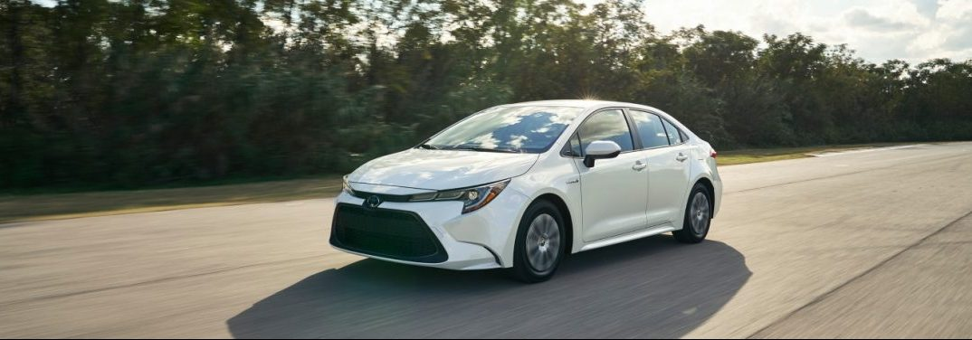 2020 Toyota Corolla driving on a forest road