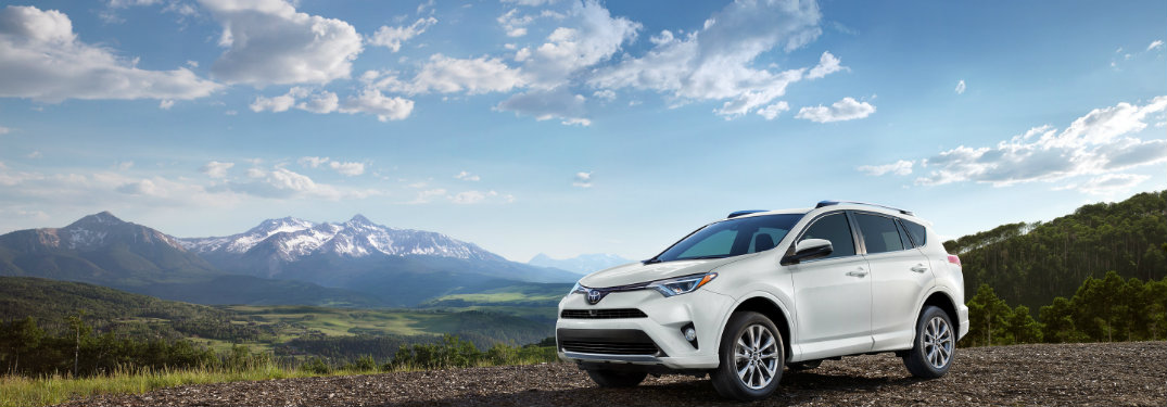 2018 Toyota RAV4 parked in the mountains