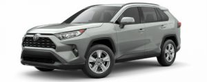 2019 Toyota RAV4 in Lunar Rock