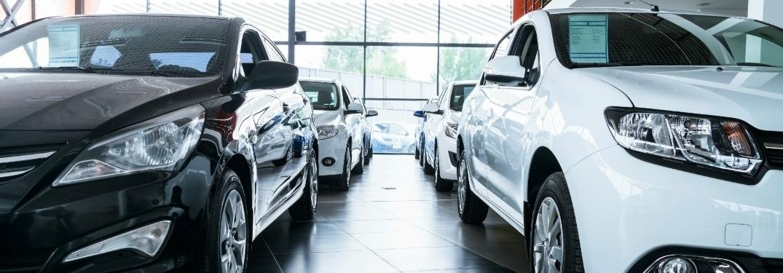 white bad black new cars on floor of dealership
