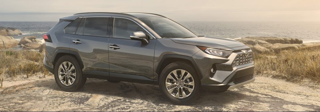 Silver 2019 Toyota RAV4 parked on a hilly seashore.