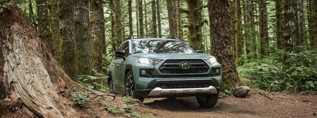 When are 2019 Toyota RAV4 models available?