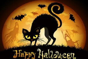 Happy Halloween text with black cat in the background