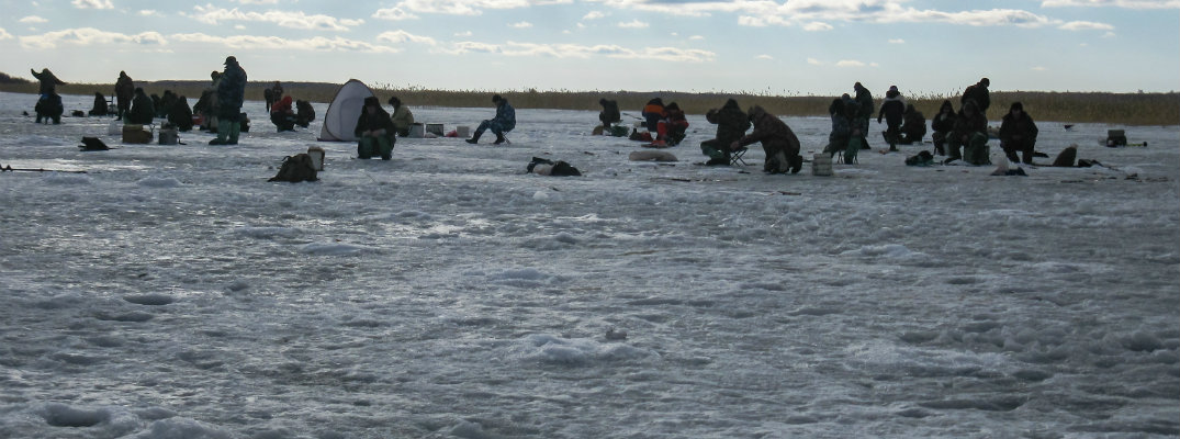 Crowd of ice fishers on lake