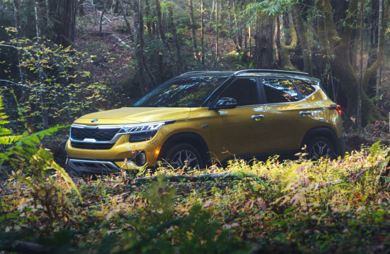 2021 Kia Seltos exterior front fascia driver side hiding in foliage in woods