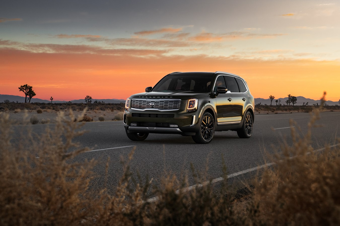Check Out What Makes The Kia Telluride a Winner