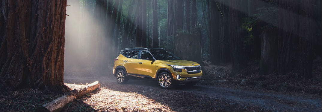The 2021 Kia Seltos introduces a bold new look to the Kia SUV lineup
