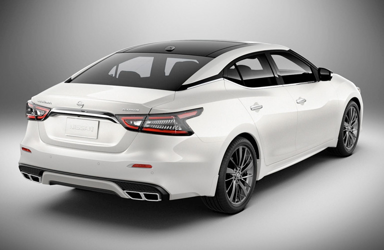 2019 Nissan Maxima in white on a grey background