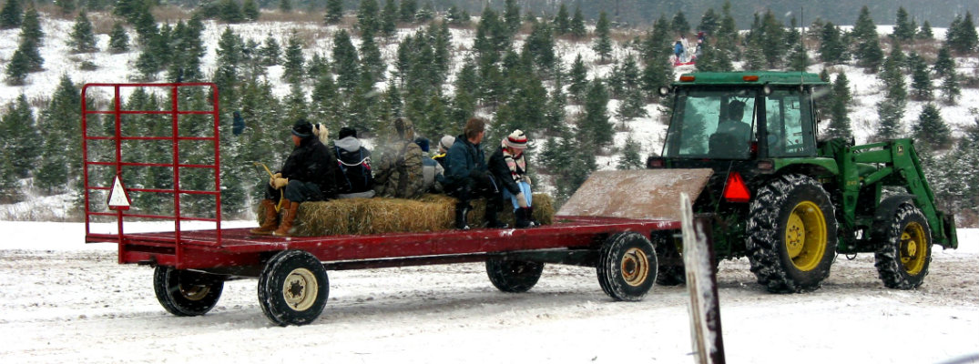 People riding in the back of a tractor