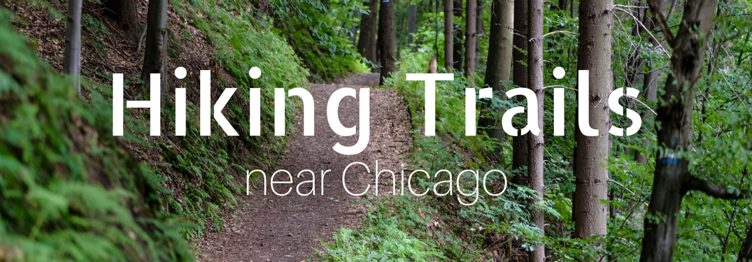 forest trail with an overlay that says hiking trails near chicago