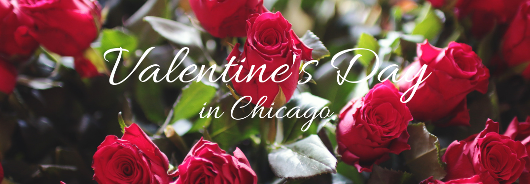 Valentine's Day in Chicago