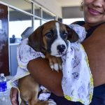 Pet-Day-Cabrera-Auto-Arecibo-Puerto-Rico-18