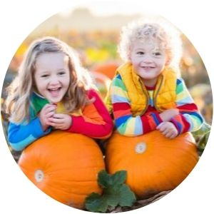 Two Little Girls in a Field with Pumpkins