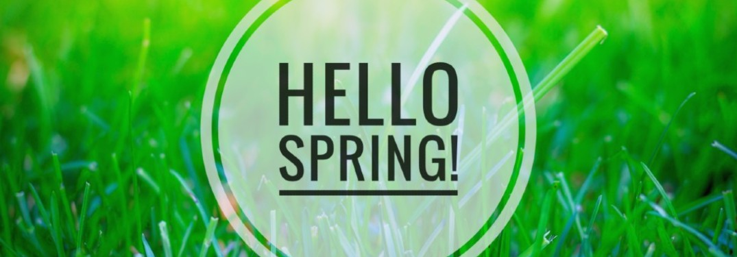 hello spring text on green grass