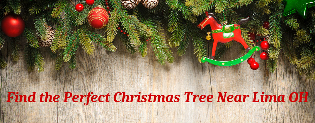 Choose Your Own Christmas Tree Farms Lima OH at Allan Nott-Community Info-Christmas Tree Farm Banner