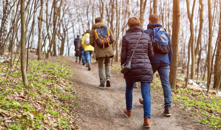 young people hiking on a forest trail