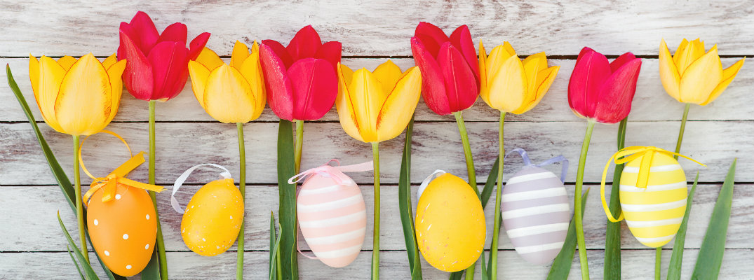 a line of red and yellow tulips alongside Easter eggs laid on a wooden porch outside during spring