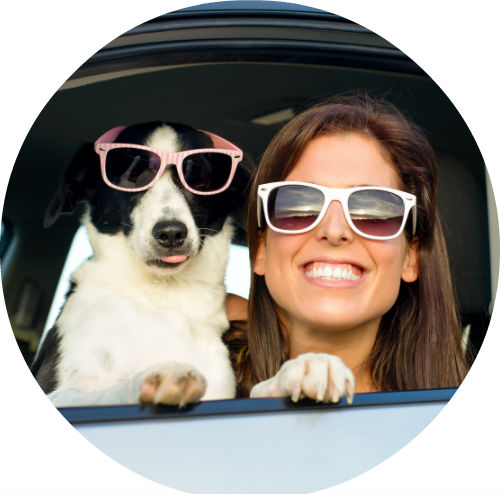 girl and dog wearing sunglasses looking out car window