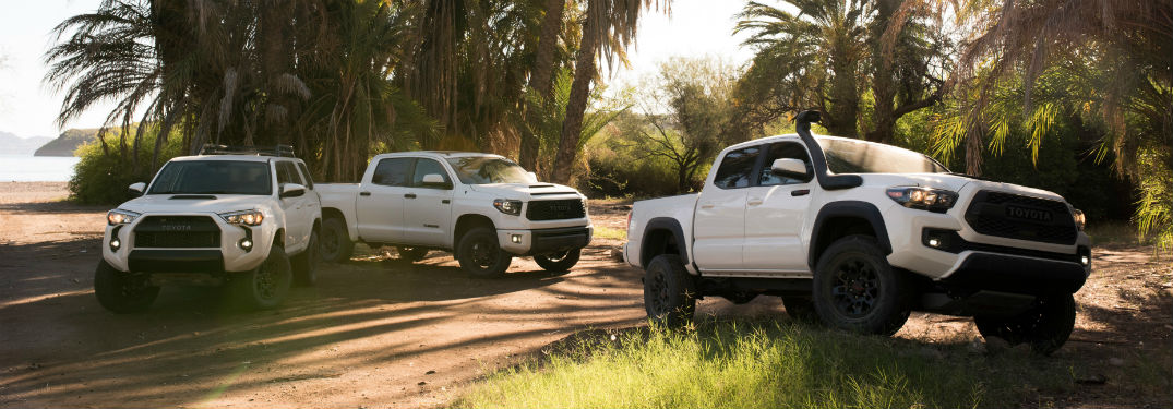 Image of the 2019 Toyota Tacoma, Tundra, and 4Runner parked in a field