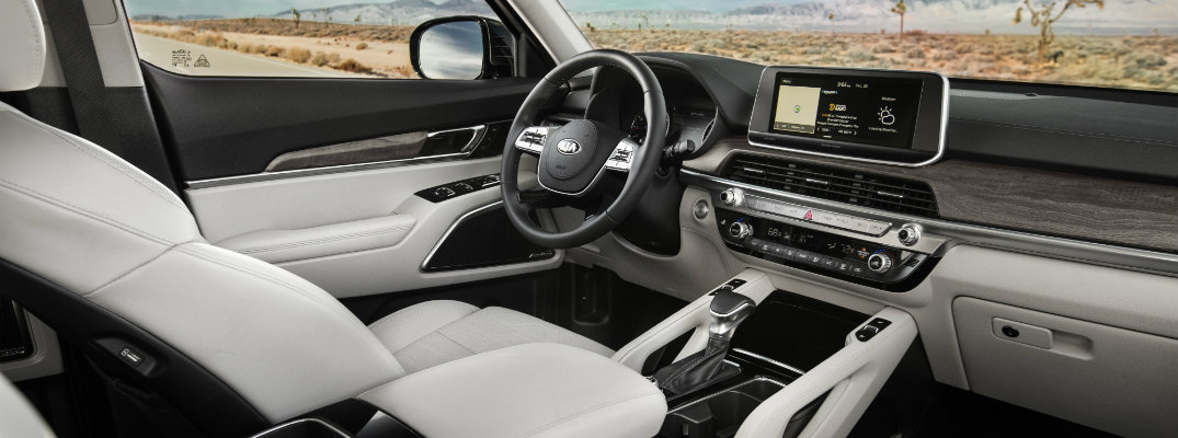 What are the Upholstery Options of the 2020 Kia Telluride?