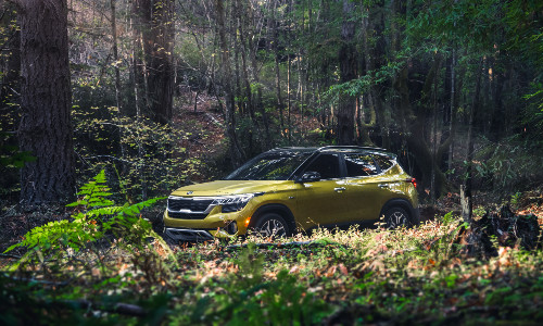 2021 Kia Seltos exterior shot with yellow paint color parked in the middle of brush in a green forest